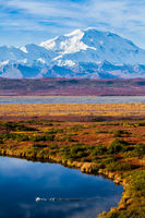 A Swan's Lake,Alaska,Denali National Park,Fall,Landscape