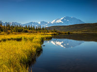 Mount Denali, Mckinley, Alaska, Denali National Park, Autumn, Mountain, Foliage, Landscape, Horizontal