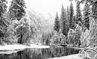 Frozen in Time, Black and White, California, Horizontal, Mountains, Yosemite National Park, landscape, winter, Snow, BW, B&W, Black, White
