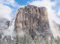 Shedding, Snow,Yosemite National Park, California,storm