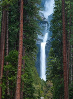 Yosemite Beauty,Yosemite National Park, California,water,fall,vertical.panoramic,sound