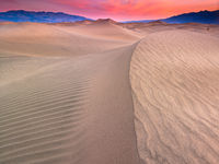 Desert Morn,California,Desert,Dunes,Horizontal,Orange,landscape