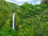 Hawaii, Falls,Big Island,waterfall,Lush,Water,Soul