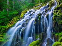 Jumping Waters,Oregon,Spring,Stream,Waterfall,green,horizontal,lush