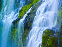 Oregon Spring Falls,Oregon,Spring,Stream,green,horizontal,lush,Waterfall