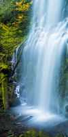 The Source,Fall,Green,Proxy Falls,autumn,panoramic,waterfall