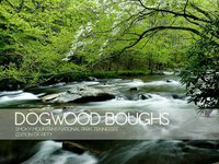 Dogwood Boughs