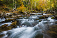 Autumn's Rush,Smoky Mountains National Park,River,Autumn,Color,wood