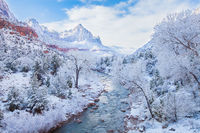 Winter Paradise,Snow,Utah,Winter,Zion National Park,horizontal,fall