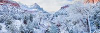 Snowclad Zion,Panoramic,Utah,Winter,Zion National Park,Snowclad,horizontal,snow,desert,climate,Gray,desert,climate