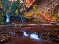 Desert Falls,Autumn,Zion National Park,horizontal,Desert Falls,Water,Canyon,wall