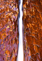 A Copper Fall,Desert,Orange,Utah,Zion National Park,landscape