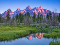 Grand Teton National Park, Wyoming, View at the Beaver Pond, Schwabacher