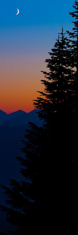 Crescent Moon-3,Moon,Sunset,Trees,Vertical,Washington,mountains,Mount Baker-Snoqualmie National Forest, Night,Crescent,Shine,Bright, photo
