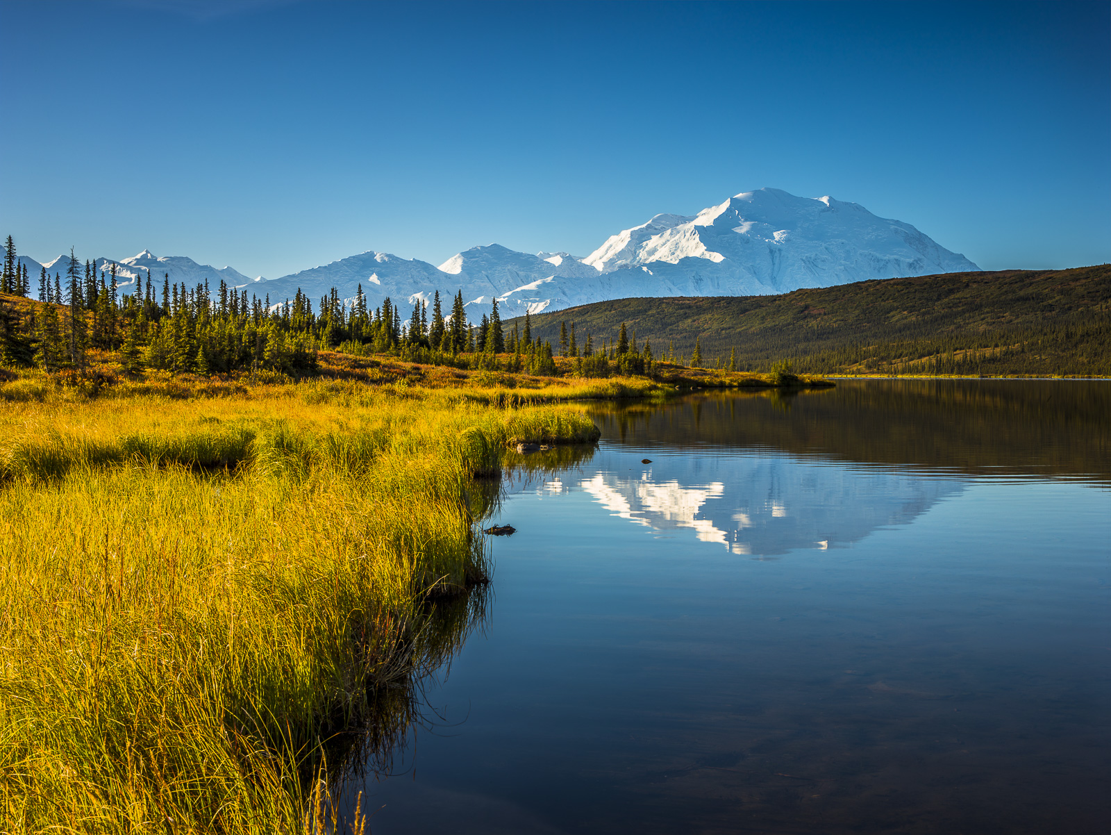 Mount McKinley, Reflections, Denali National Park, Alaska, wonderlake, mountain, autumn, photo