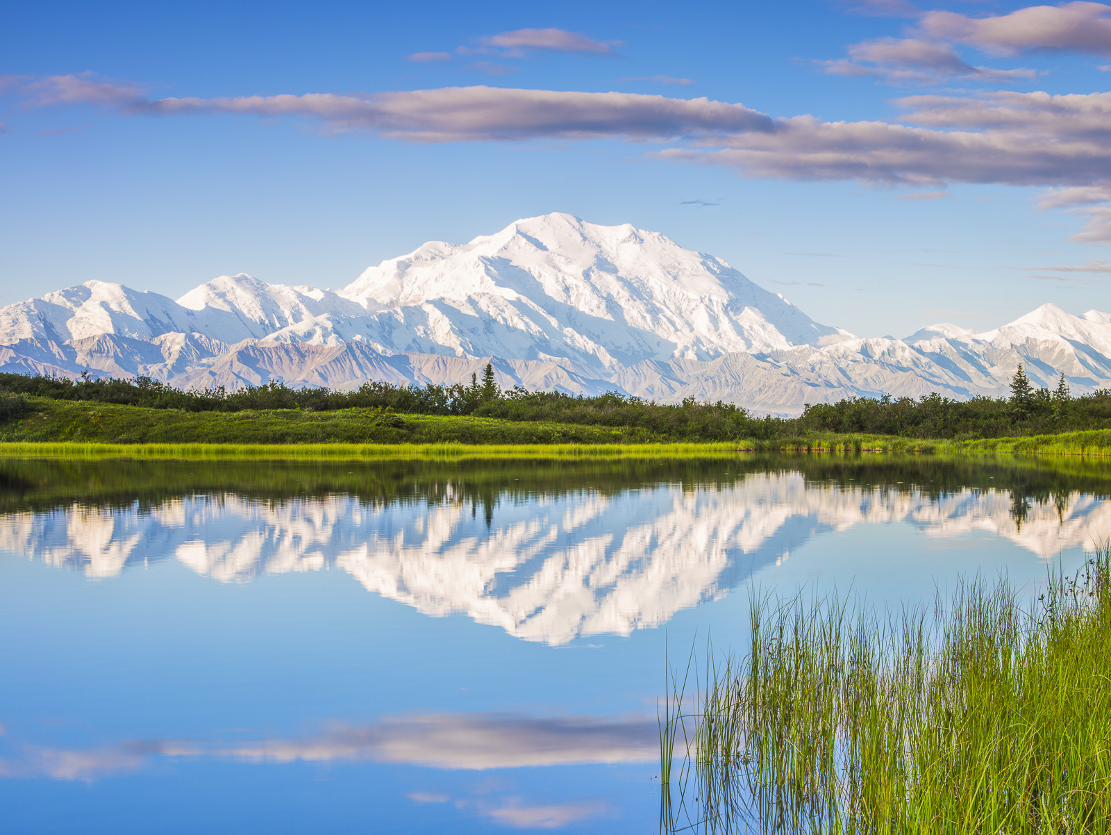 Denali Spring, Alaska, AZ, Reflection Pond, Denali National Park, Green, blue, photo