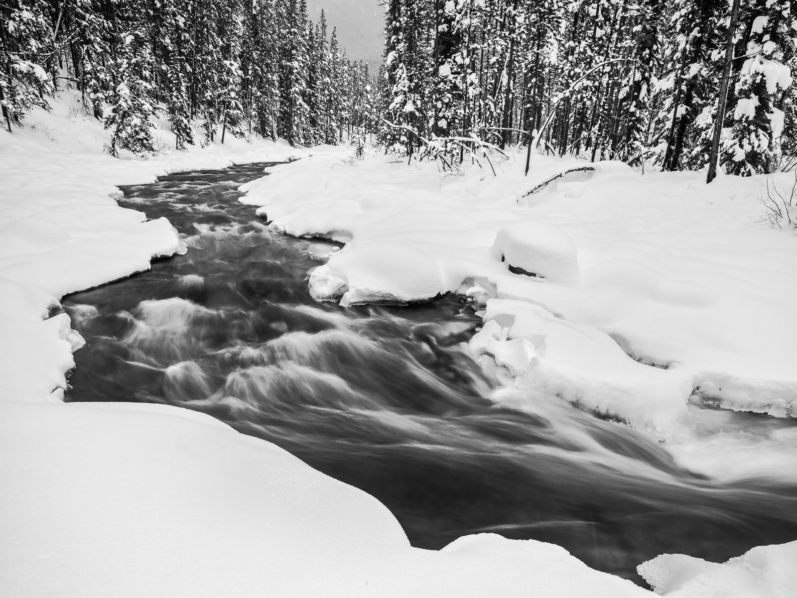 Holding Back Winter, Canada, Horizontal, landscape, winter, Jasper National Park, , BW, B&W, Black, White, photo