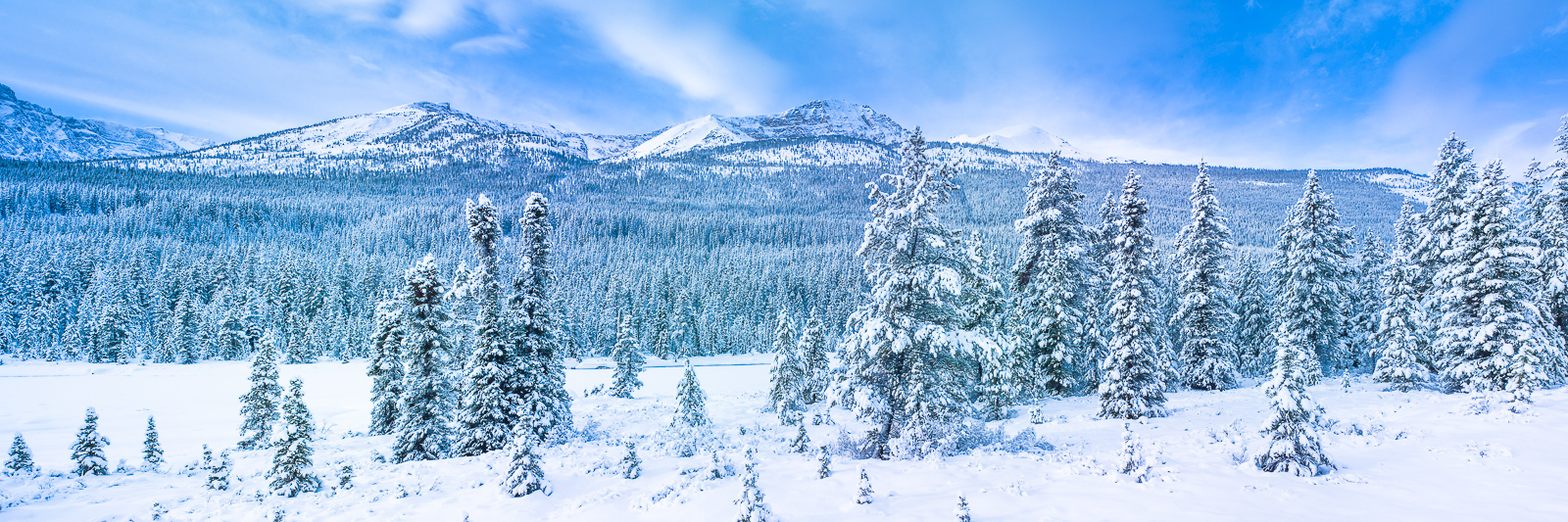 Winter Wonderland,Winter,wonderland,Jasper, park, Canada, panoramic, horizontal,blue, photo