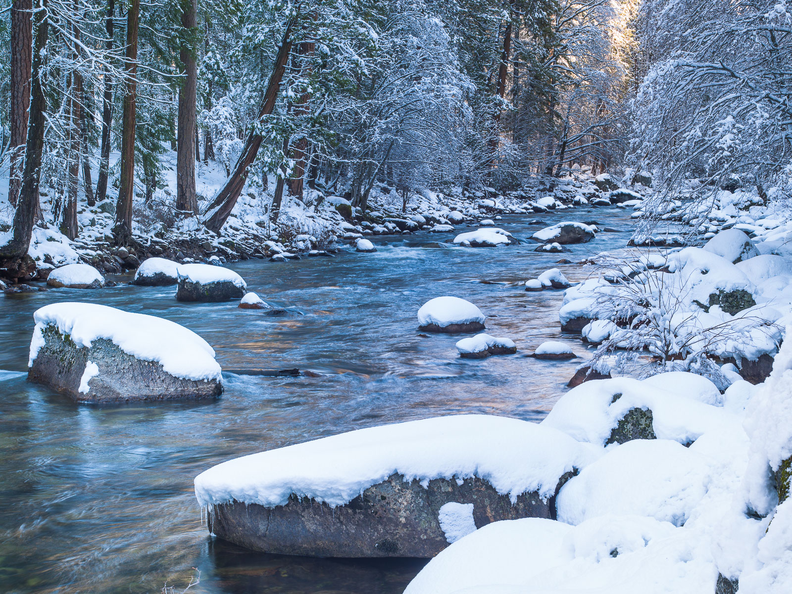 In the Shadows,landscape,winter,Yosemite National Park, California,blue, green, photo