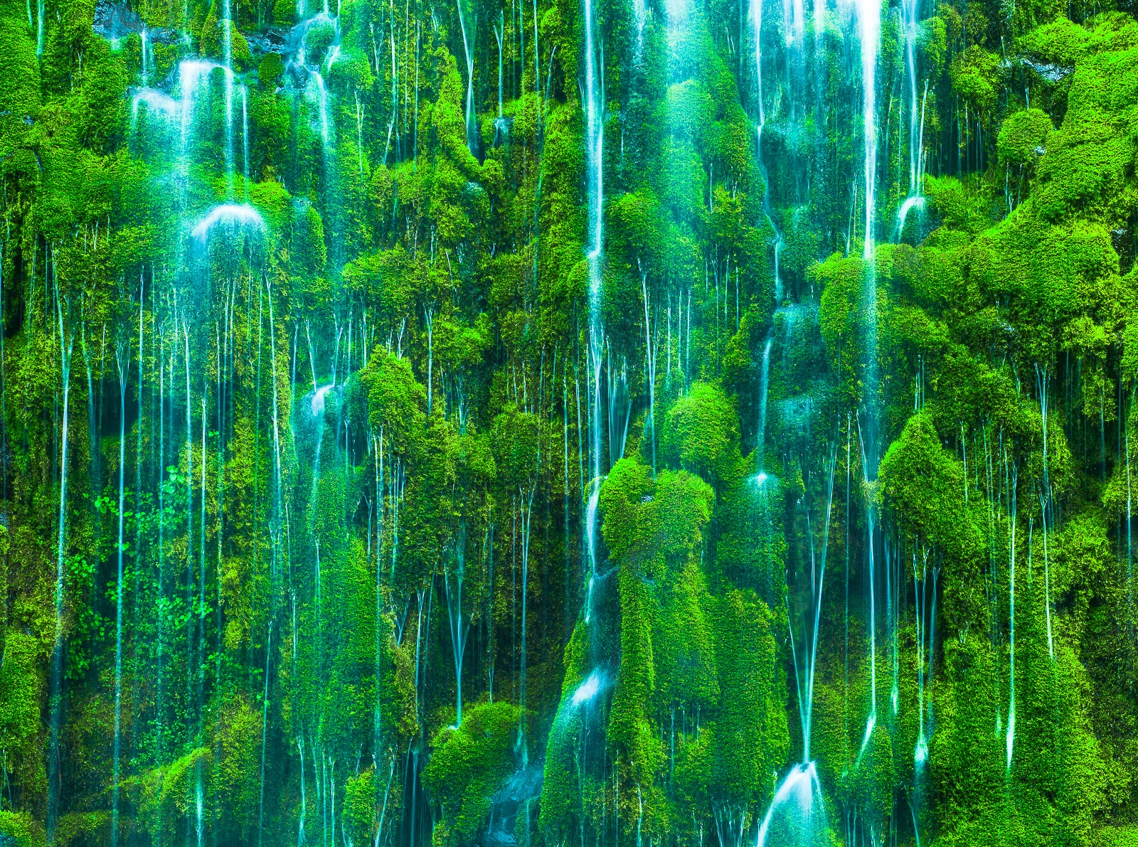 Rivulets in Moss,California,Close-up,Waterfall,horizontal,Rain,Train, Track,, photo