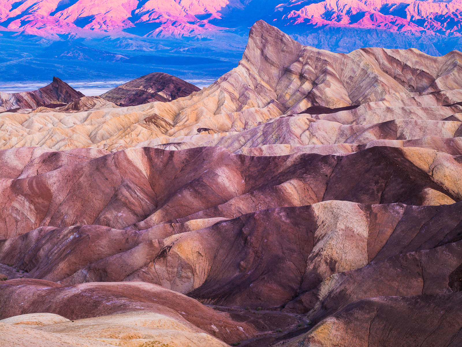 Sun Painting Stone,California,Death Valley National Park,Desert,Purple,Sunrise,Yellow,horizontal, photo