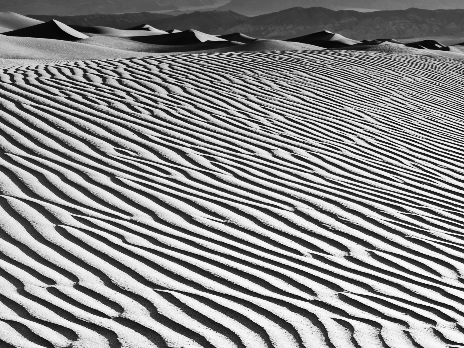 Death Valley, Black and White, California, Death Valley National Park, Desert, Dune, Dunes, horizontal, BW, B&W, Black, White, photo