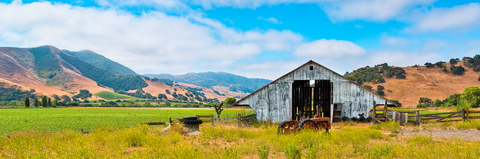 Yesteryear's Farm Barn,California,Horizontal,Panoramic,blue,landscape,rural,yellow,Santa Barbara,rolling hills,Yesteryear's Farm,fog,blue sky, photo