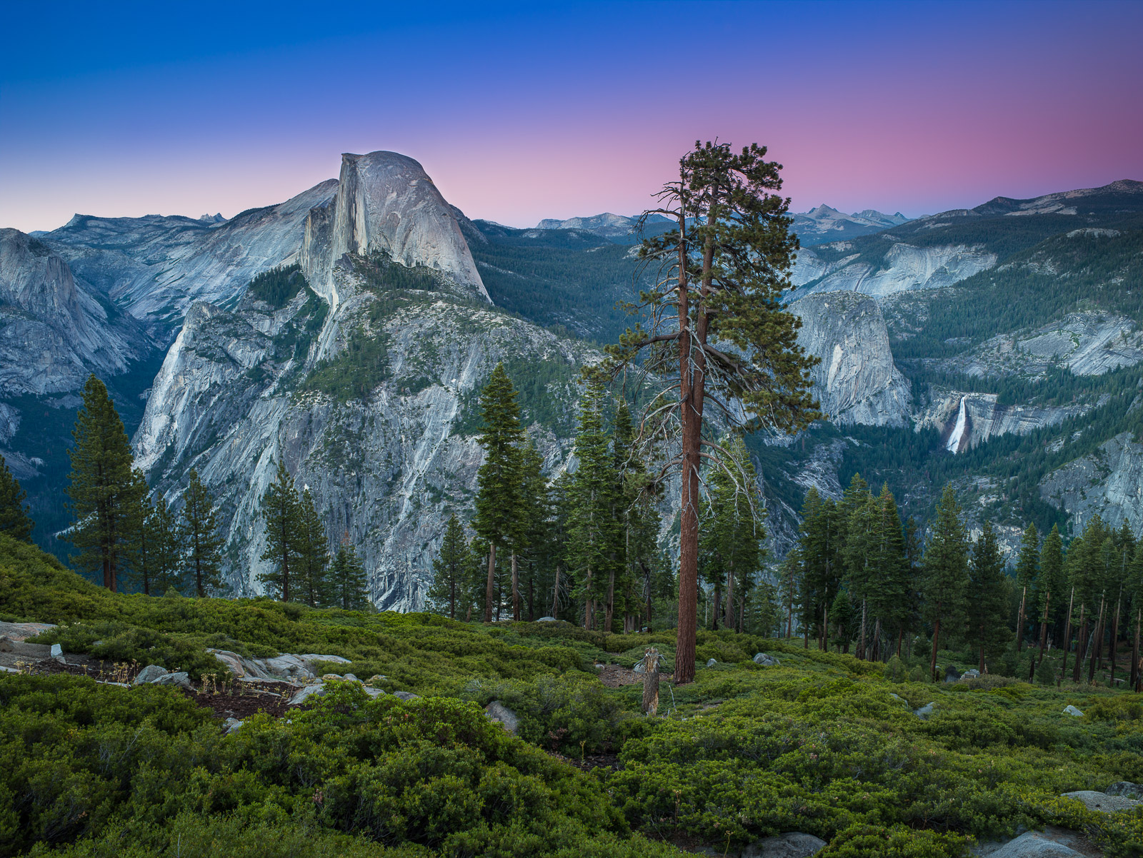 Yosemite National Park, California, As Tall as it Gets, photo