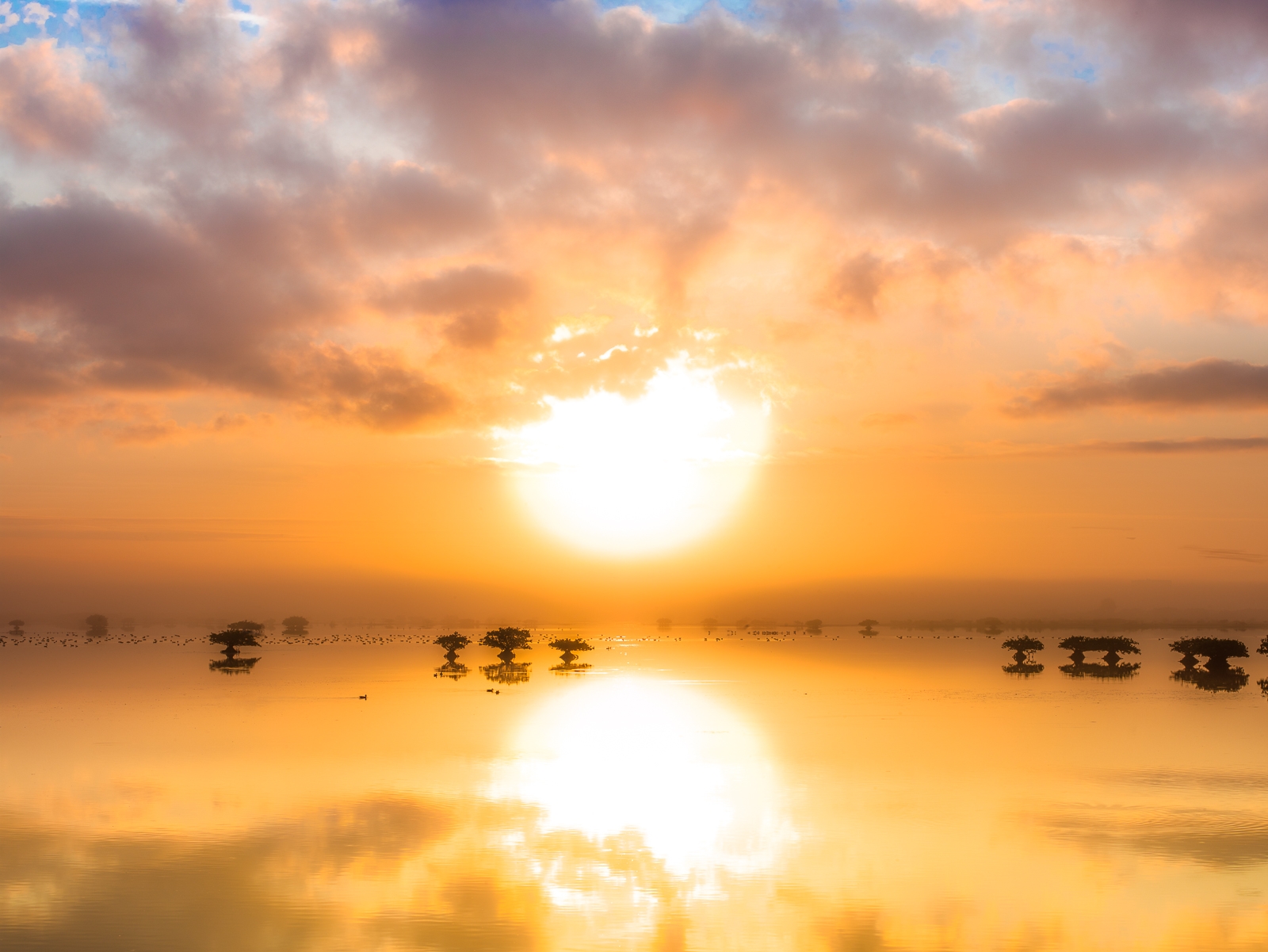 Florida is full of surprises and this sunrise caught me off guard. The ducks swimming around in this pristine environment and...