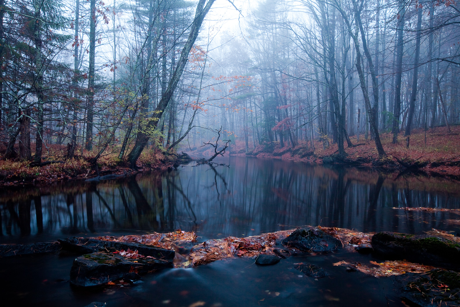 Dark Waters,Autumn, stream, water, New England, horizontal,dark,fog,, photo