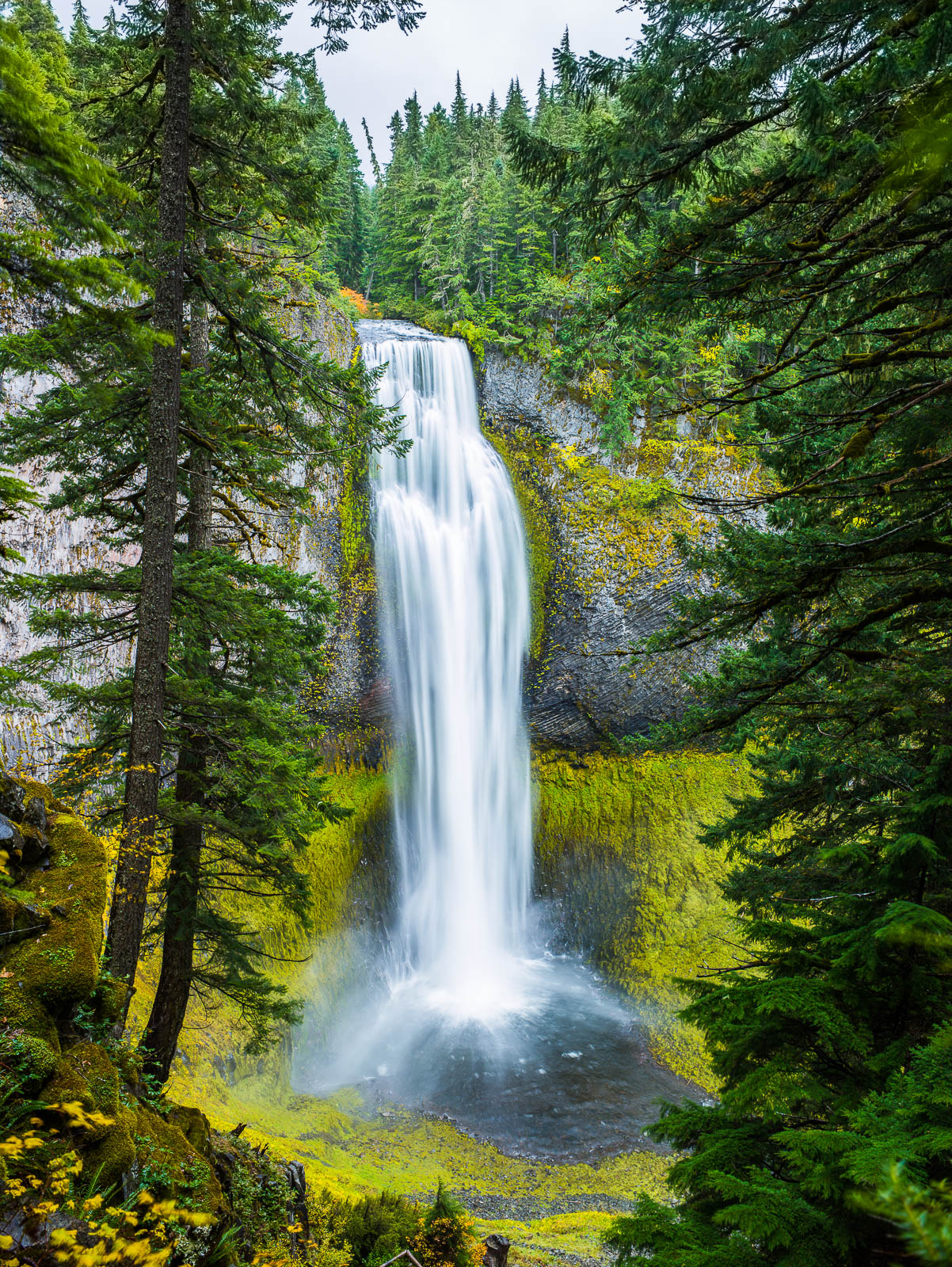 Salt Creek Falls,Salt Creek Falls,waterfall,Oregon,Gem, photo