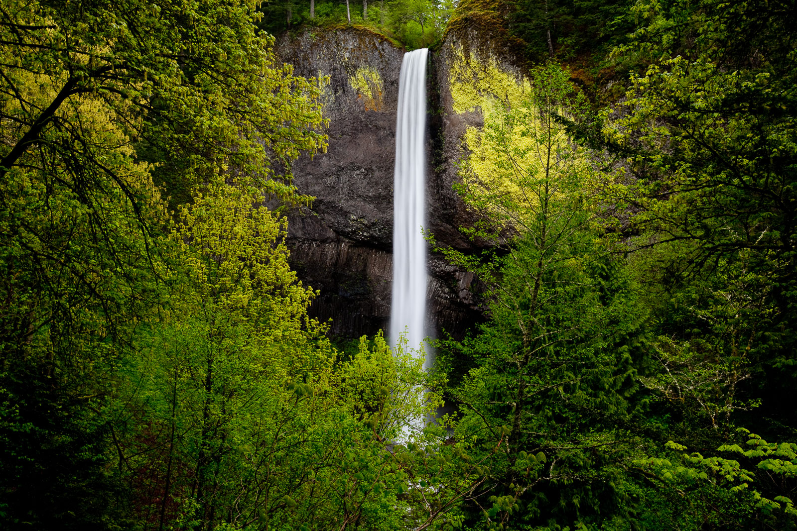 White Ribbon,Landscape,Spring,Stock,Waterfall,Columbia Gorge, Oregon,White Ribbon, photo