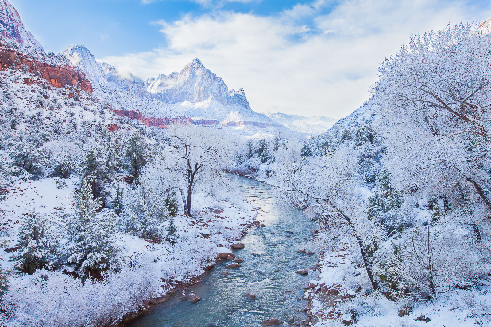 Winter Paradise,Snow,Utah,Winter,Zion National Park,horizontal,fall, photo