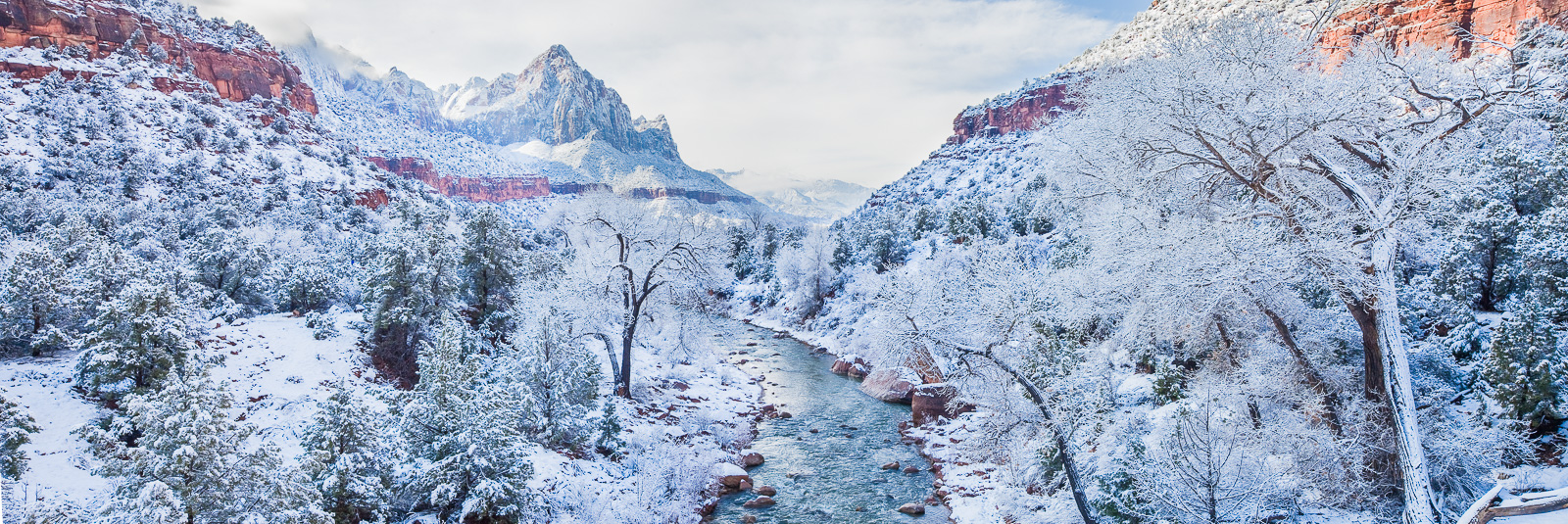 Snowclad Zion,Panoramic,Utah,Winter,Zion National Park,Snowclad,horizontal,snow,desert,climate,Gray,desert,climate, photo