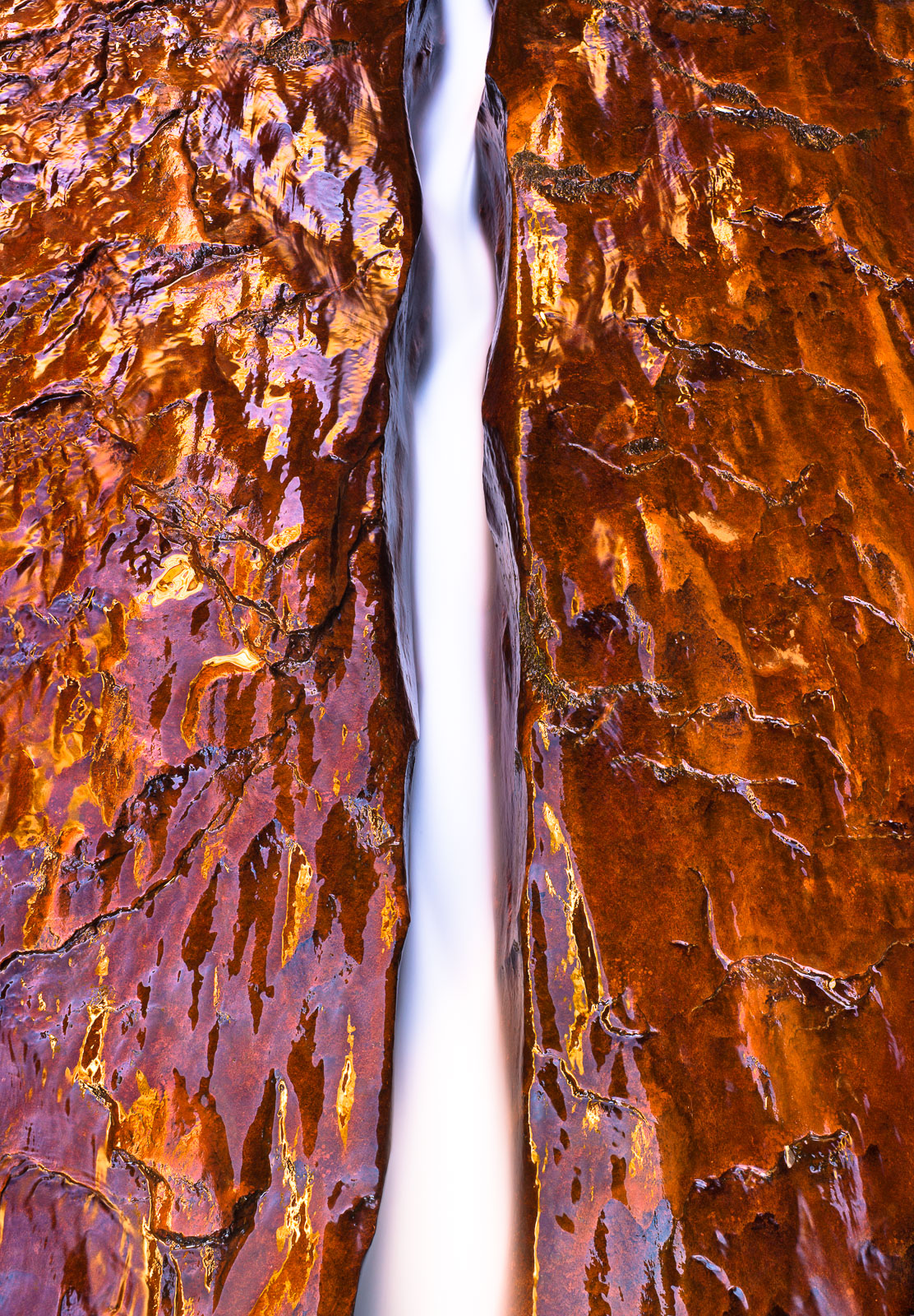 A Copper Fall,Desert,Orange,Utah,Zion National Park,landscape, photo