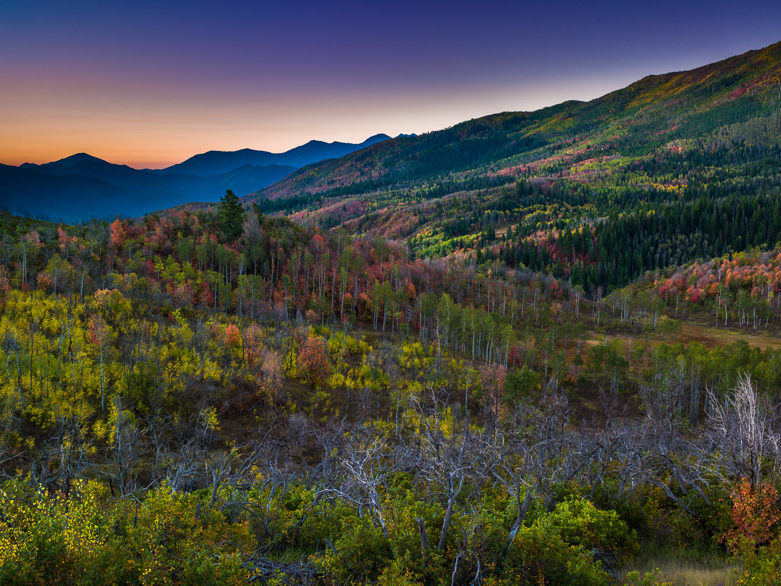 Quilted Valley,Autumn,Blue,Desert,Moutains,Sunrise,Utah,Yellow,horizontal, photo