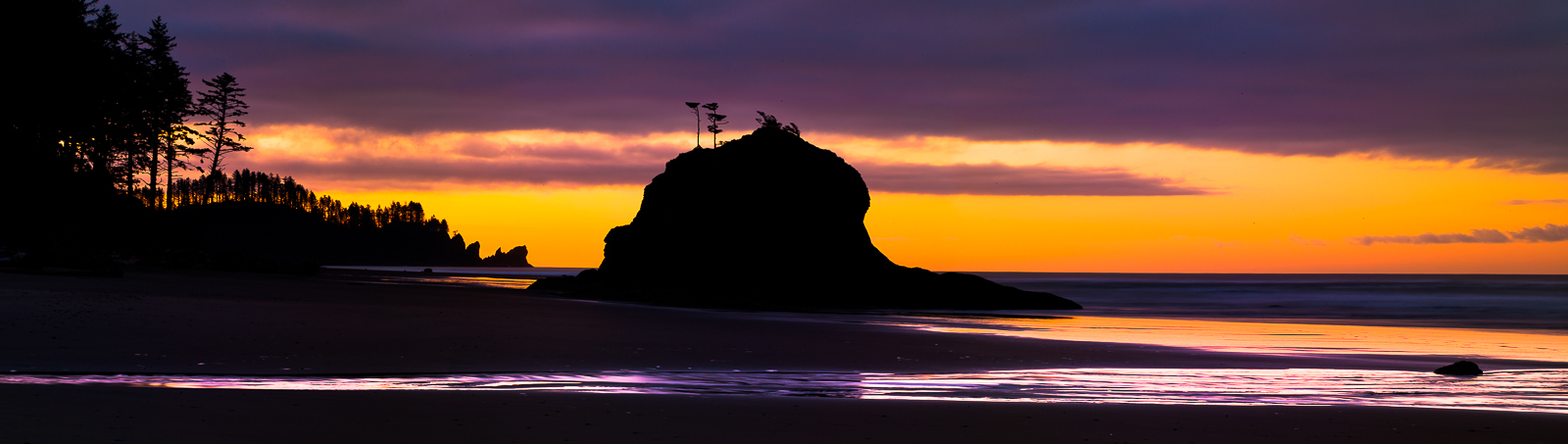 Western coastline offers sea stack silhouettes scattered across the shoreline bathed in purple and gold of the sunrise.