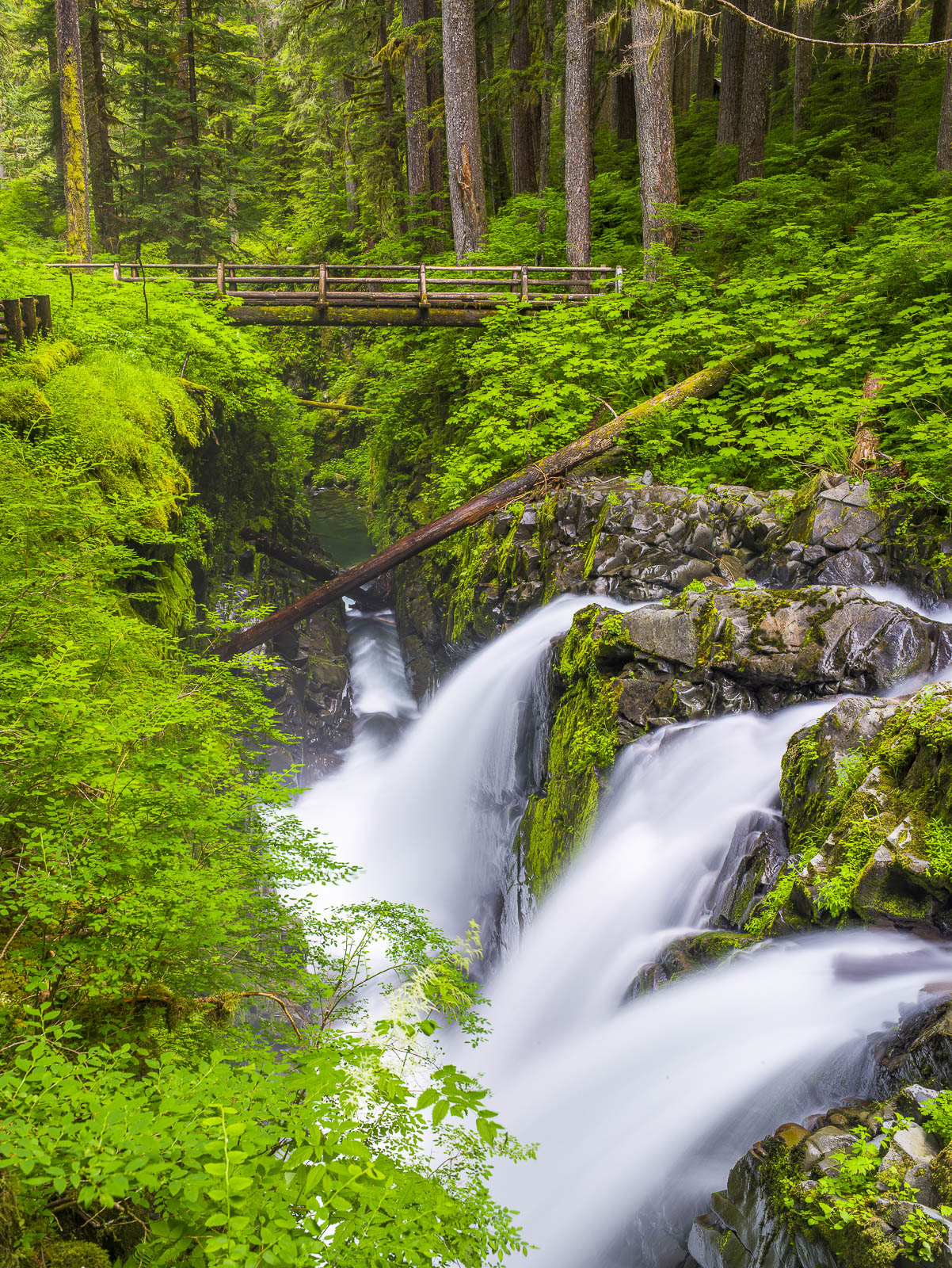 Olympic NP, Sol Duc Falls, National Park, waterfall, water, green, photo